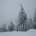 Снег на Тростяне